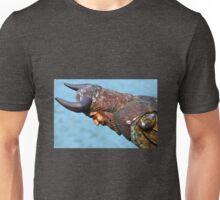 Old Wooden Figurehead Unisex T-Shirt