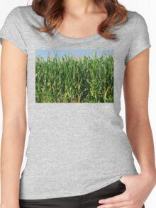 Corn Field Women's Fitted Scoop T-Shirt