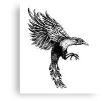 Taiwanese Magpie Canvas Print