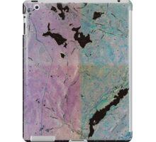New York NY Yankee Lake 20100304 TM Inverted iPad Case/Skin