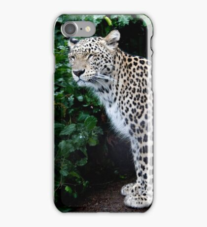 Standing Proud..... iPhone Case/Skin