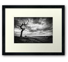 Beverley Westwood Framed Print