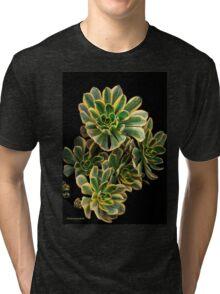 Super Sedum! Tri-blend T-Shirt