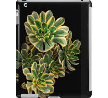 Super Sedum! iPad Case/Skin