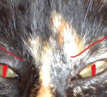EVIL CAT Sticker