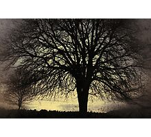 Gone with the Wind Photographic Print