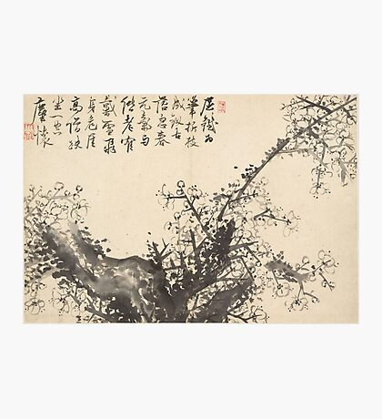 Cho Hûi-ryong, Korean  , Old Weathered Plum Tree with Spring Blossoms and a Poem Photographic Print