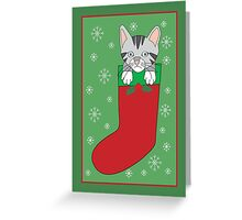 Stocking Kitty Greeting Card