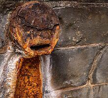 Spring Rust by barkeypf