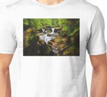 Alpine Falls Unisex T-Shirt