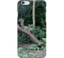 Mixed media- squirrels playing iPhone Case/Skin