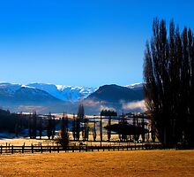 New Zealand Winter. by Dave Hare