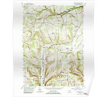 New York NY Beaver Dams 137095 1953 24000 Poster