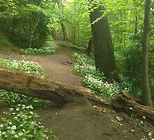Broken Pixie Tree Bridge by emshi