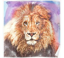 Lion - Pencil and Water Colour Poster