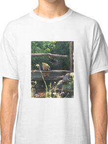 Winnie the Pooh Photograph Classic T-Shirt