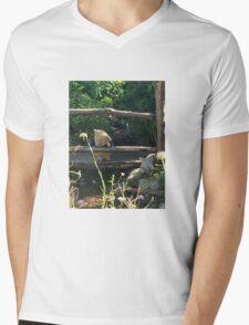 Winnie the Pooh Photograph Mens V-Neck T-Shirt