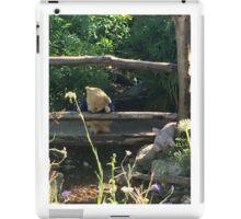 Winnie the Pooh Photograph iPad Case/Skin