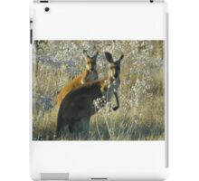 A pair of roos iPad Case/Skin