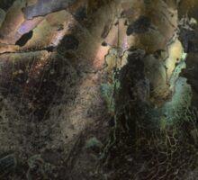 Ammonite shell Sticker