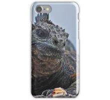 Galapagos Iguana iPhone Case/Skin