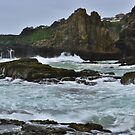Wild Sea by Terry Everson