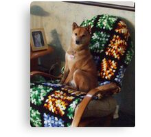 Sporty in his favorite chair Canvas Print