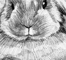 Bunny 02 Sticker