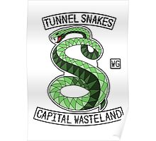 Tunnel Snakes Poster