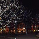 Holiday Lights, Santa Fe Plaza, Santa Fe, New Mexico by lenspiro