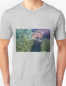 Green sea turtle (Chelonia mydas) swimming.  Unisex T-Shirt