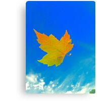 Leaves a'Falling Canvas Print