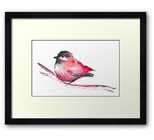 Red Bird Watercolor Framed Print
