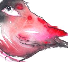 Red Bird Watercolor Sticker