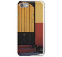Dog Sleeping on a Doorstep iPhone Case/Skin