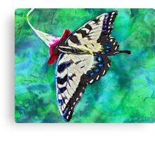 When Butterflies Are Free Canvas Print