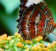 Butterfly Beauty Sticker