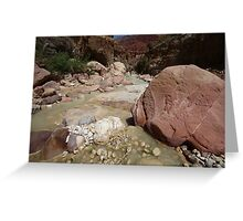 Wadi Zered (Wadi Hassa or Hasa) in western Jordan. A sand stone canyon with fresh running water. Greeting Card