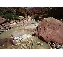 Wadi Zered (Wadi Hassa or Hasa) in western Jordan. A sand stone canyon with fresh running water. Photographic Print