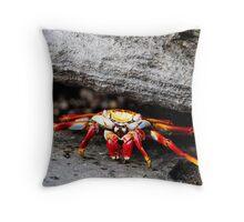 Sally-lightfoot crab Throw Pillow