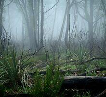 Charred Landscape by Ben Loveday