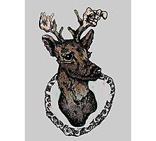 Tumblr Deer Head Photographic Print