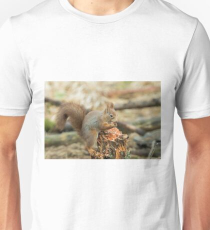 Red Squirrel with Hazel Nut Unisex T-Shirt