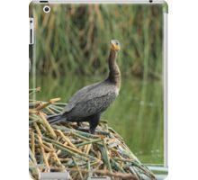 Neotropical Cormorants Next to a Lake iPad Case/Skin