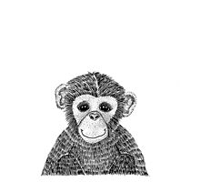Cheeky Chimp Photographic Print