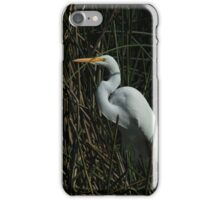 Great Egret Standing in Reeds iPhone Case/Skin
