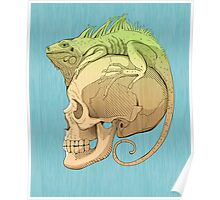 colorful illustration with iguana and skull Poster