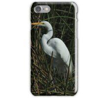 Great Egret in a Lake iPhone Case/Skin