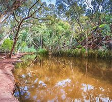 Wilpena Billabong    (GO6) by Ray Warren