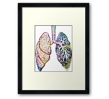 Lungs - Colours Framed Print